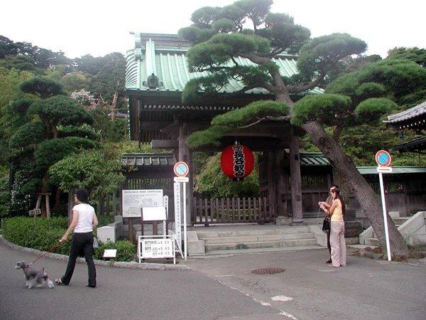 08四番長谷寺.JPG